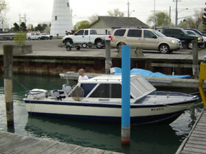 19 ft Aluminum Boat with 100 HP Evinrude and Trailer