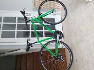 Trek FX2 Hybrid Bike