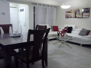 NEW FURNISHED BASEMENT CLOSE TO FOREST GLEN SHOPPING CENTRE. Kitchener / Waterloo Kitchener Area image 3