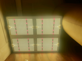 Top of the range Samsung led quantum board grow lights