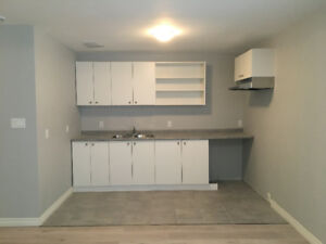 362 Division St.- ALL INCLUSIVE, Renovated 4 Bdrm Apt. Downtown!