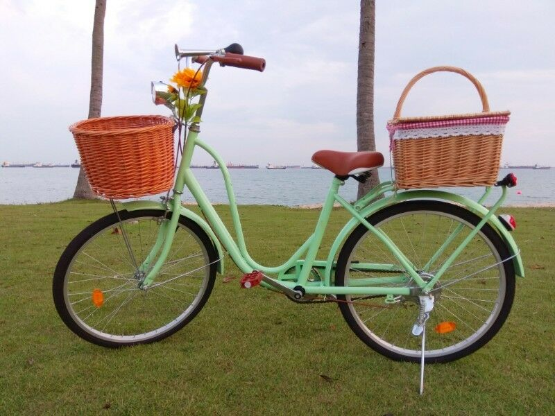 Vintage Mint Bicycle for Rent in Singapore