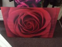 Red rose canvas