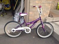 CCM Girls Bike
