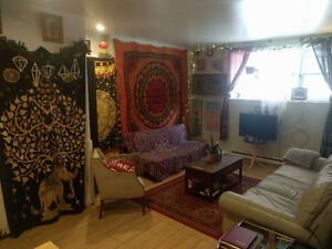 Lovely Yellow Room for Rent (June- August 31) In Mcgill Ghetto~!