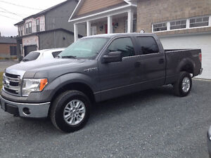 2014 Ford F-150 marche pied Camionnette