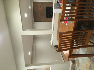 Beautiful brand new basement suite available Feb. 1