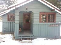 Studio Cabin