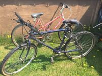 Bicycles ( 3 adult / 2 boy ) all for 65$