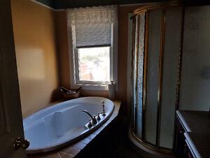 Beautiful house close to dt Gatineau Ottawa / Gatineau Area image 4