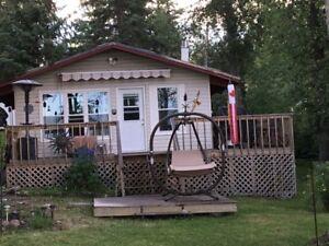 Lake front cottage - Skeleton Lake