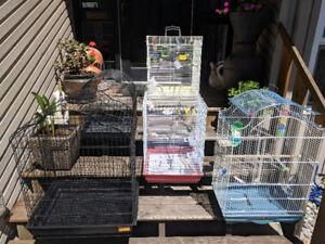 Cages with perches and food dishes