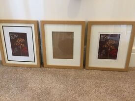 Frames and pictures