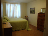 Clayton Prk Furnished Rm for Female: MSVU,HDC,Sobeys,Bus,Central