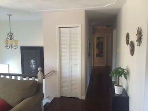 Very Large Room Available in Young Professional Home