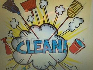 House and /  Apartment Cleaning