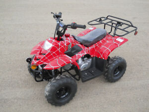 MANITOBA'S BEST PRICES ON KIDS/ADULTS ATVS/DIRT BIKES/DUNE BUGGY