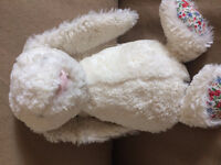 Plush Bunny found in Langford, on Carlow near Dunford