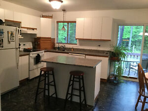 Used Kitchen cabinets and countertop.. plus extras