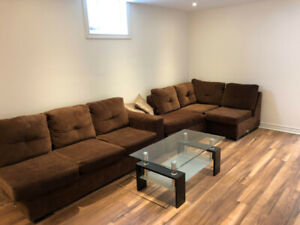 New Reno Basement for Rent - South Courtice