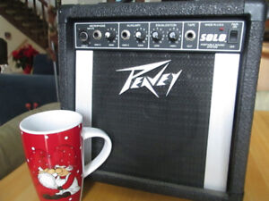 Peavey SOLO sound system