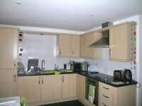 Superb 2 bedroom flat in Seven Kings part dss acceptable with dss