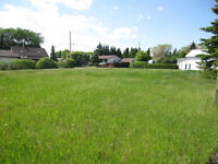 Lots located in the Village of Kendal, SK For Sale!