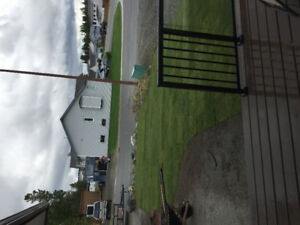150sq/ft or sod 20$