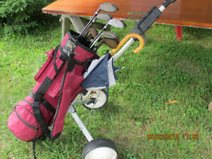 Golf club set with Caddy