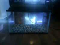 10 Gallon Fish Tank / Aquarium