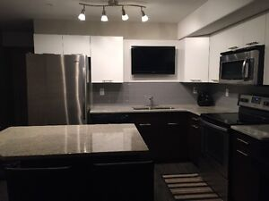 Executive furnished 1 bedroom Condo in downtown for rent