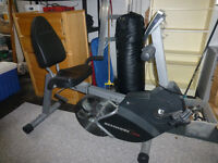 Schwinn Backdraft Recumbent Exercise Bike