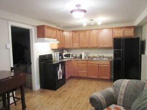 2-Apartment Home - Hodgewater Line, Makinsons, NL - MLS# 1138141 St. John's Newfoundland image 6