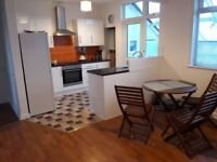Large two rooms for rent to professionals