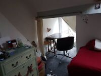 Quirky single room to rent in lovely Pontcanna flat