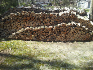 Cheap Firewood!!!
