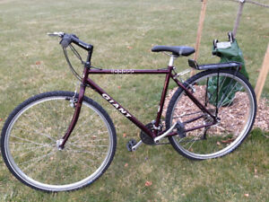 GIANT Innova Cross With NEW Schwalbe Studded Winter Tires