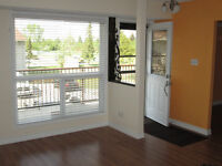 Beautiful 2 Bedroom West End Condo For Rent