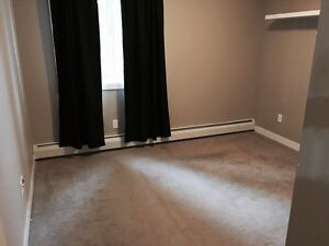Terwillegar 1BR for rent