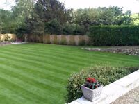 Gardening and Landscaping Services - Professional, Affordable