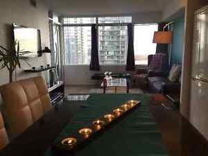 FULLY FURNISHED EXECUTIVE SUITE 1+1 AMAZING LAKEVIEW (PRICE DROP