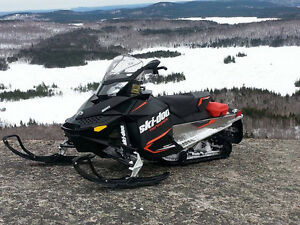 Mint  Renegade Skidoo