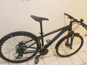 Specialized rockhopper bike