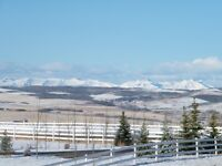 Beautiful property 3 kms. S. of Spruce Meadows.  5.35 acres 4 km