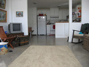 Quiet One Bedroom Loft Heated Wolfville