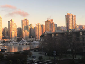 2 brm, 2 bth, furnished apartment in False Creek by the Water