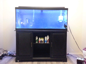 75 gallon aquarium and stand with accessories