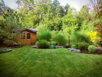 Fall Cleanup & Landscaping Services | K-W Cambridge