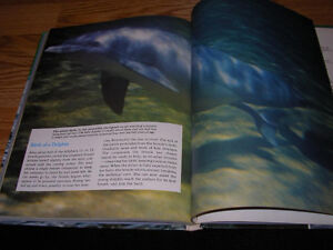 The Ocean World of Jacques Cousteau 20 volume set encyclopedia Windsor Region Ontario image 5