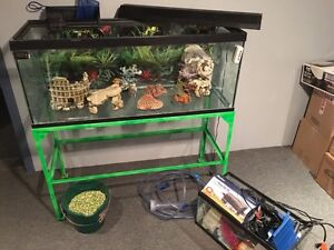 75 gallon fish tank & EVERYTHING you need + a smaller tank free